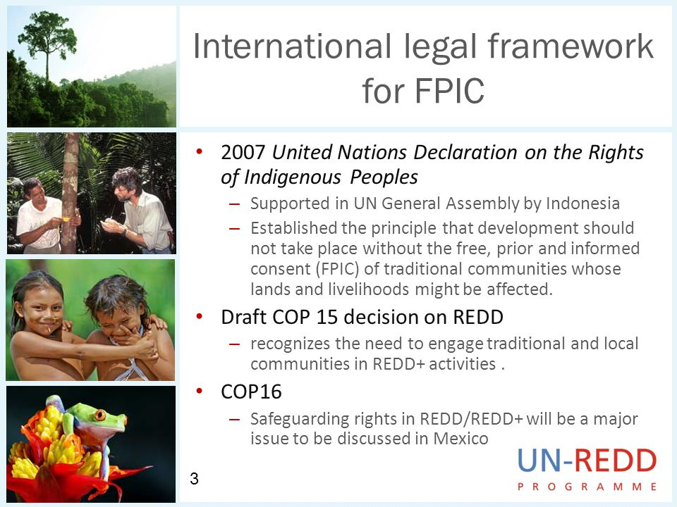 International legal framework for FPIC 2007 United Nations Declaration on the Rights of Indigenous Peoples – Supported in UN General Assembly by Indonesia – Established the principle that development should not take place without the free, prior and informed consent (FPIC) of traditional communities whose lands and livelihoods might be affected.