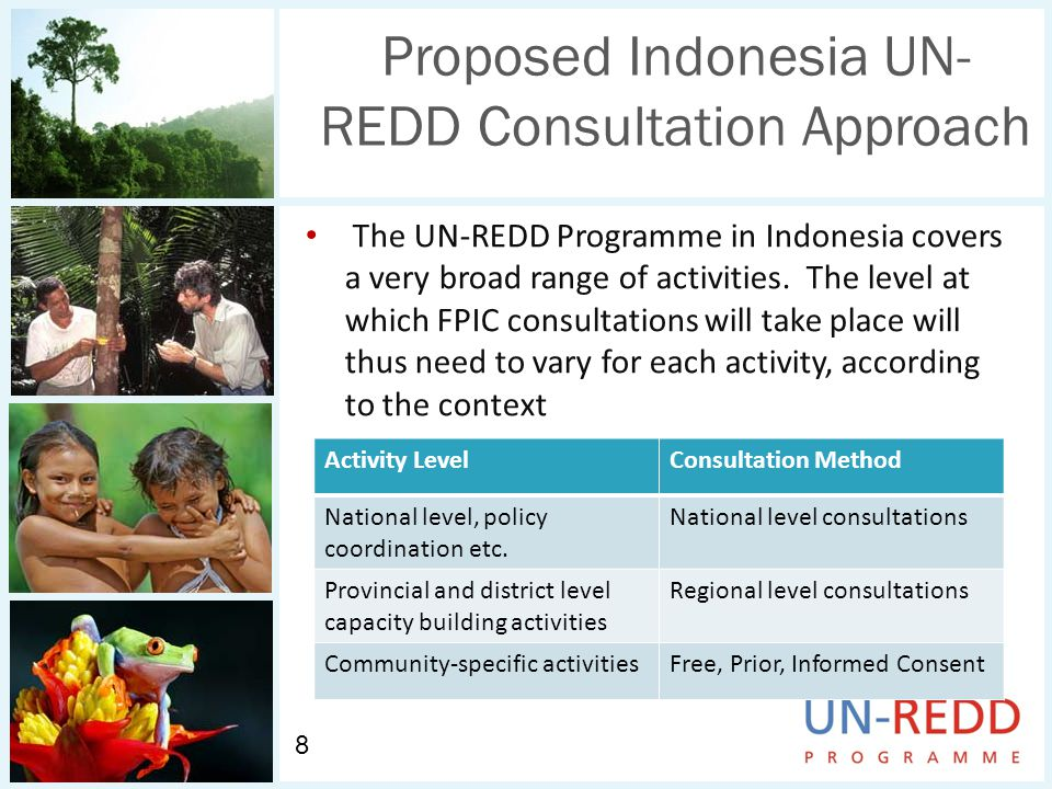 Proposed Indonesia UN- REDD Consultation Approach The UN-REDD Programme in Indonesia covers a very broad range of activities.