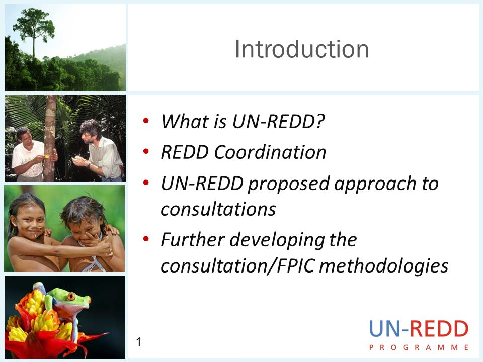 Introduction What is UN-REDD.