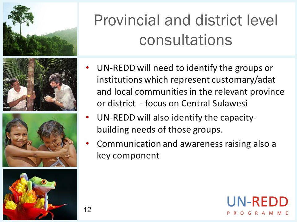 Provincial and district level consultations UN-REDD will need to identify the groups or institutions which represent customary/adat and local communities in the relevant province or district - focus on Central Sulawesi UN-REDD will also identify the capacity- building needs of those groups.