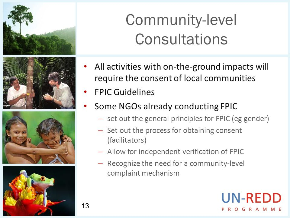 Community-level Consultations All activities with on-the-ground impacts will require the consent of local communities FPIC Guidelines Some NGOs already conducting FPIC – set out the general principles for FPIC (eg gender) – Set out the process for obtaining consent (facilitators) – Allow for independent verification of FPIC – Recognize the need for a community-level complaint mechanism 13