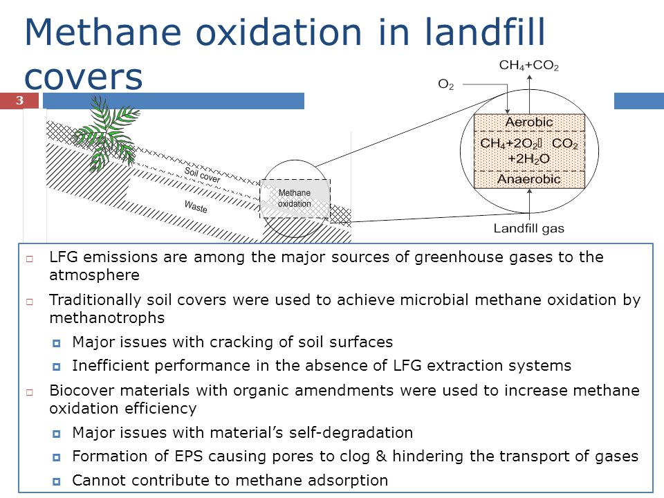 Biochar – A Potential Landfill Cover Material 4 Biochar can be amended to landfill cover soils to enhance CH 4 adsorption and oxidation Biochar can be used Biochar is advantageous over current compost biocovers Enhanced CH 4 adsorption Greater porosity and specific surface area (limits pore clogging due to EPS formation) Favors growth and CH 4 oxidation activity of methanotrophs which can conveniently exist within the highly porous biochar Enhanced gas transport through the pores Sustainable and cheap option to mitigate LFG