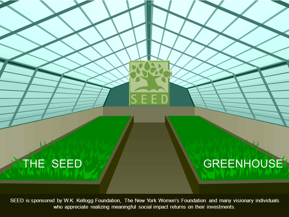 SEED is sponsored by W.K. Kellogg Foundation, The New York Womens Foundation and many visionary individuals who appreciate realizing meaningful social