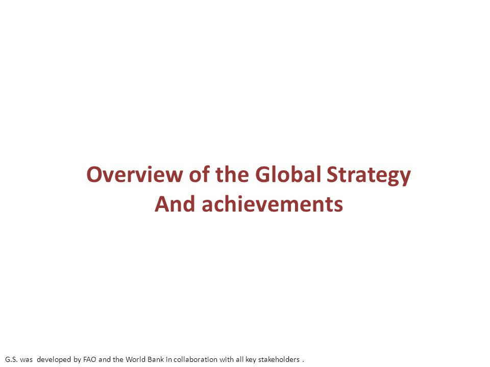 Overview of the Global Strategy And achievements G.S.