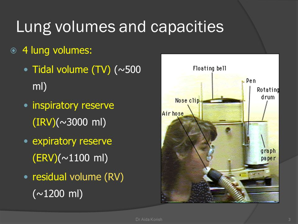 Lung volumes and capacities 4 lung volumes: Tidal volume (TV) (~500 ml) inspiratory reserve (IRV)(~3000 ml) expiratory reserve (ERV)(~1100 ml) residua