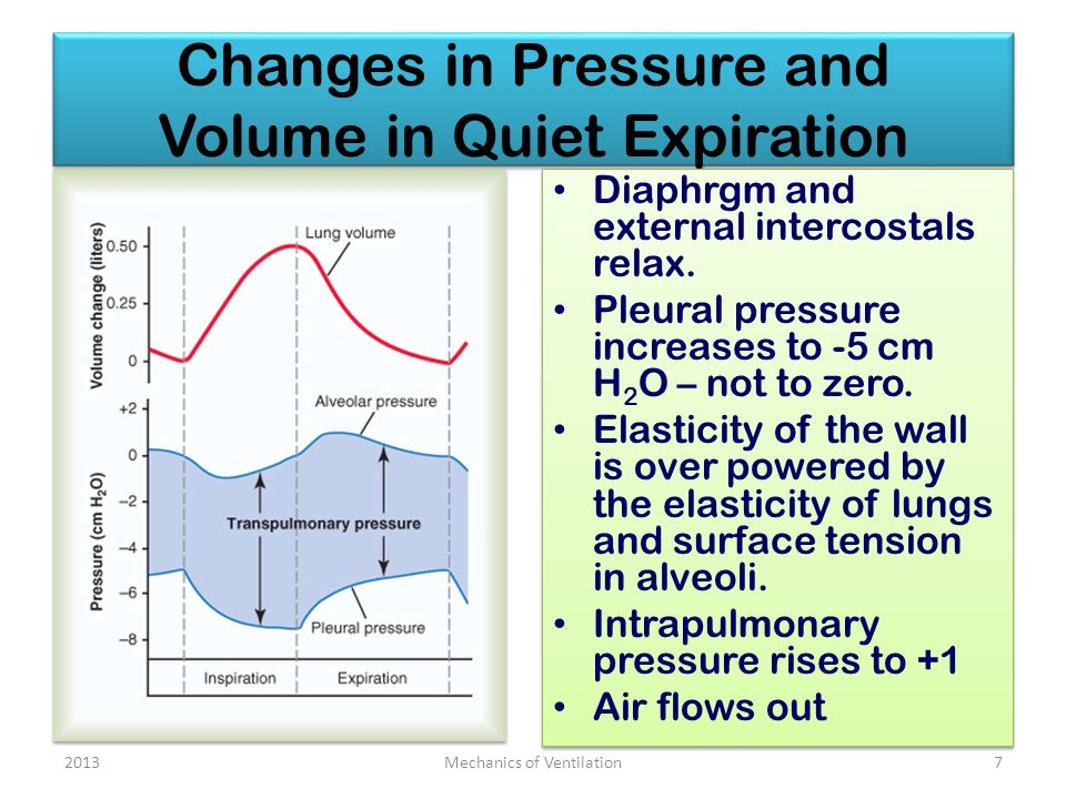 Changes in Pressure and Volume in Quiet Expiration Diaphrgm and external intercostals relax.