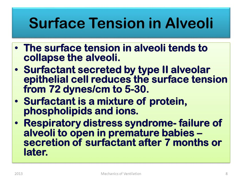 Surface Tension in Alveoli 20138Mechanics of Ventilation