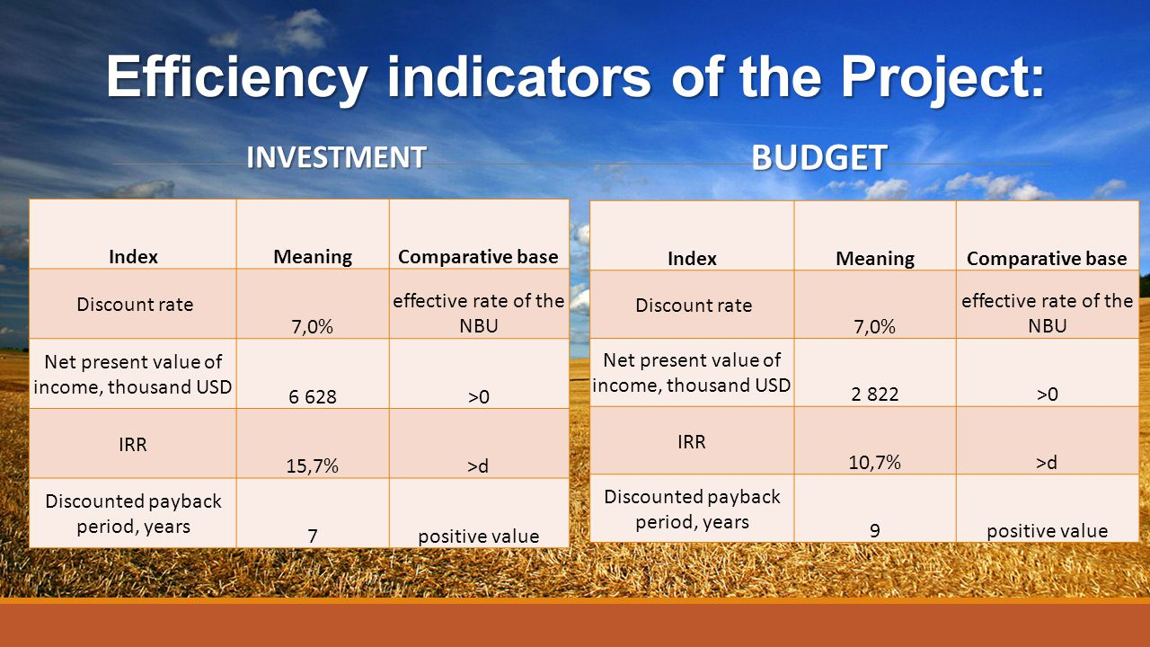 Efficiency indicators of the Project: INVESTMENT IndexMeaningComparative base Discount rate 7,0% effective rate of the NBU Net present value of income
