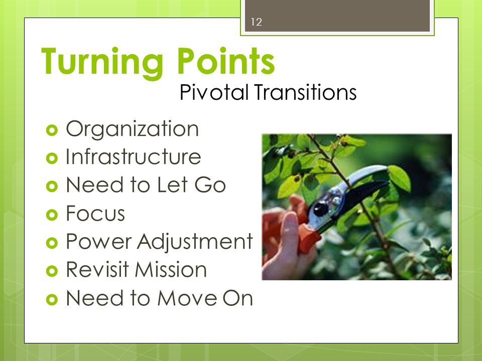 Turning Points Organization Infrastructure Need to Let Go Focus Power Adjustment Revisit Mission Need to Move On 12 Pivotal Transitions