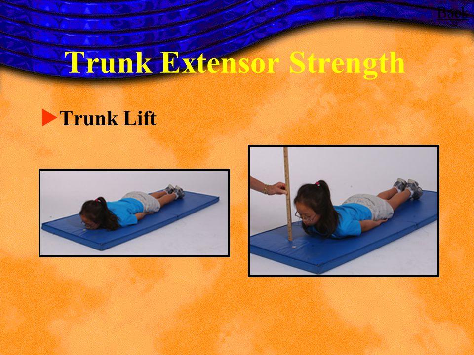 Trunk Extensor Strength Trunk Lift Back
