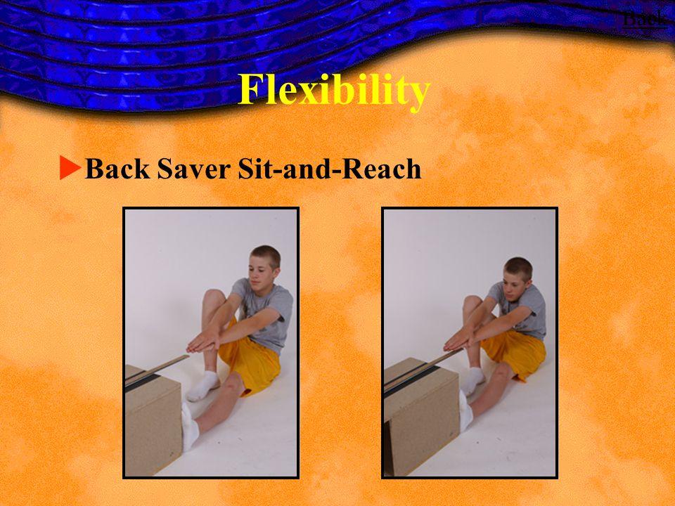 Flexibility Back Saver Sit-and-Reach Back