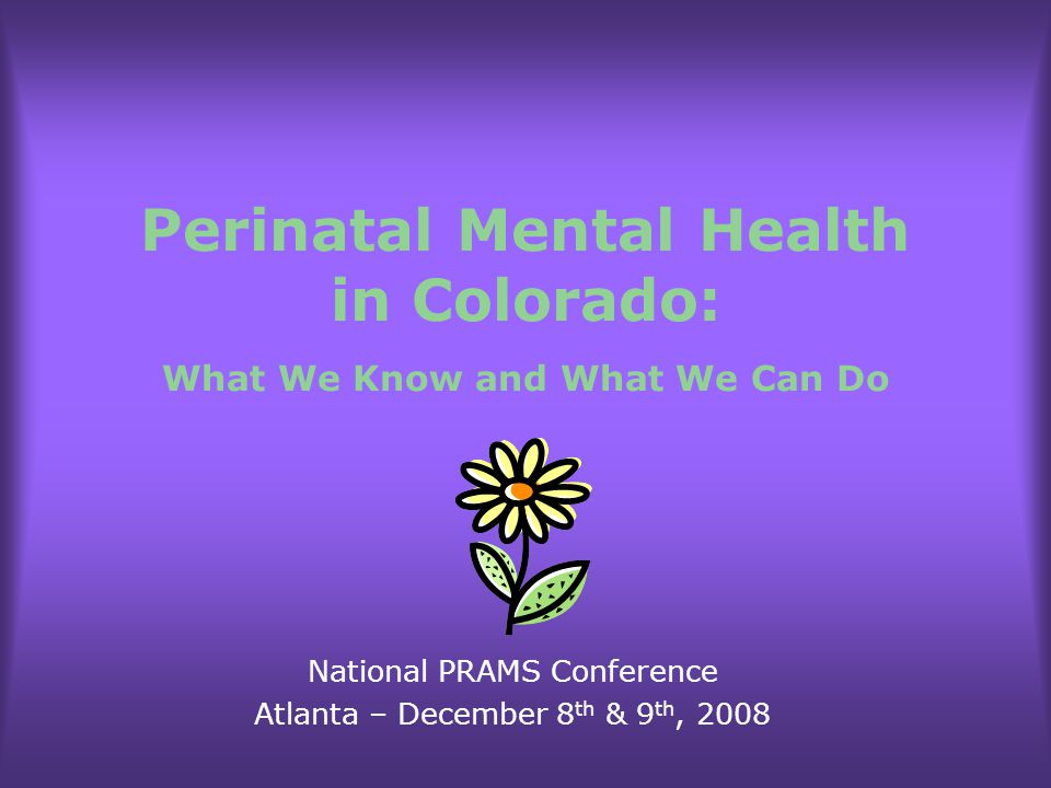 Perinatal Mental Health in Colorado: What We Know and What We Can Do National PRAMS Conference Atlanta – December 8 th & 9 th, 2008