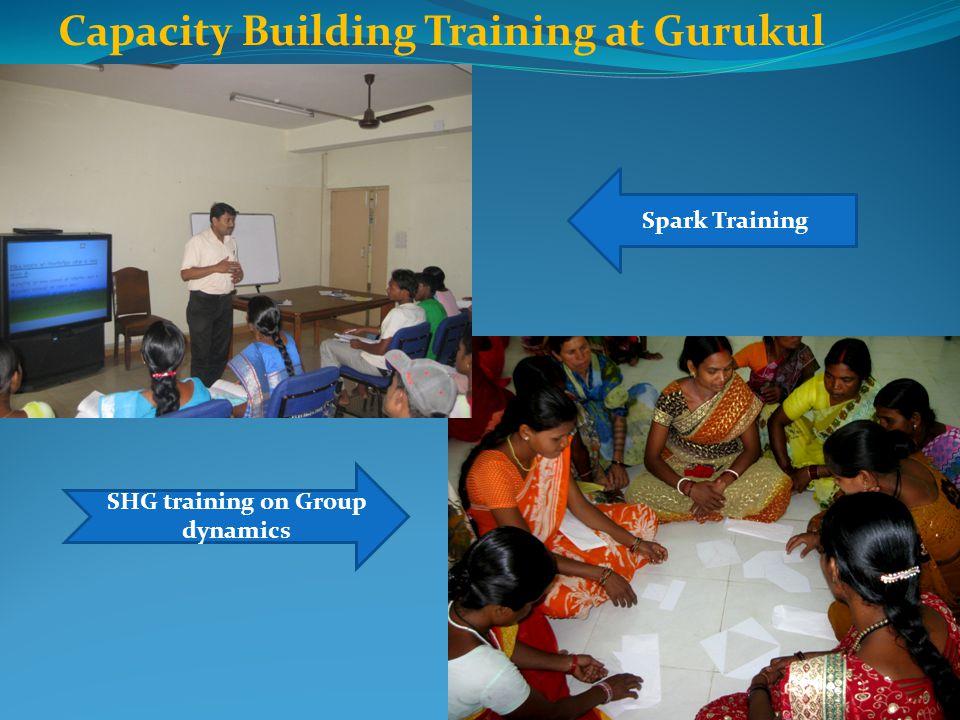 SHG training on Group dynamics Capacity Building Training at Gurukul Spark Training