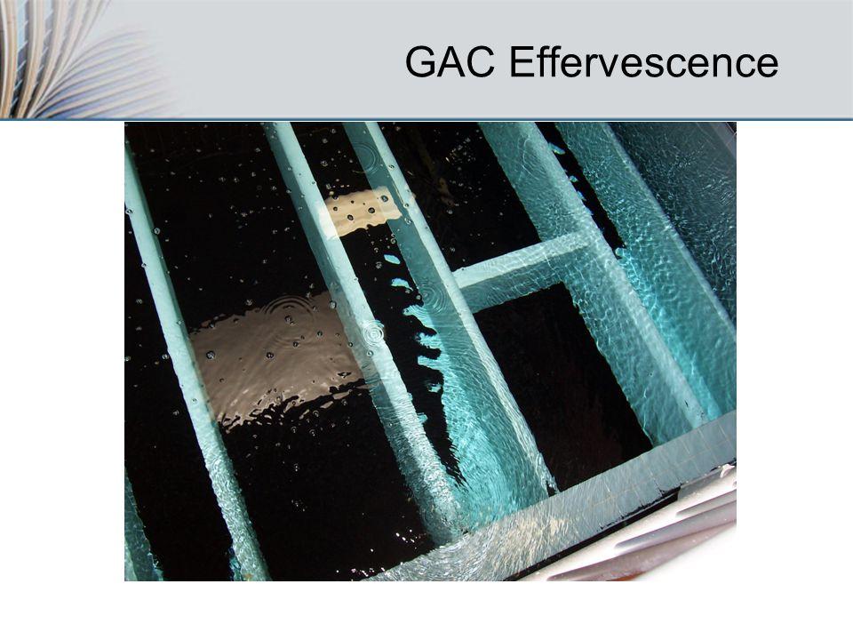 GAC Effervescence