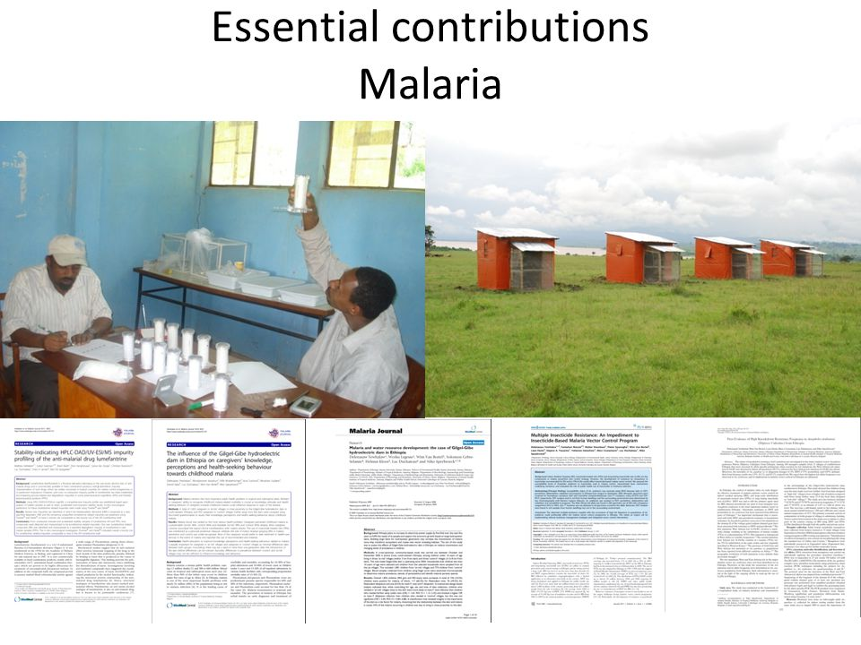Essential contributions Malaria