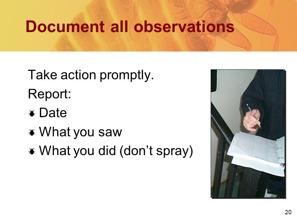 20 Document all observations Take action promptly.