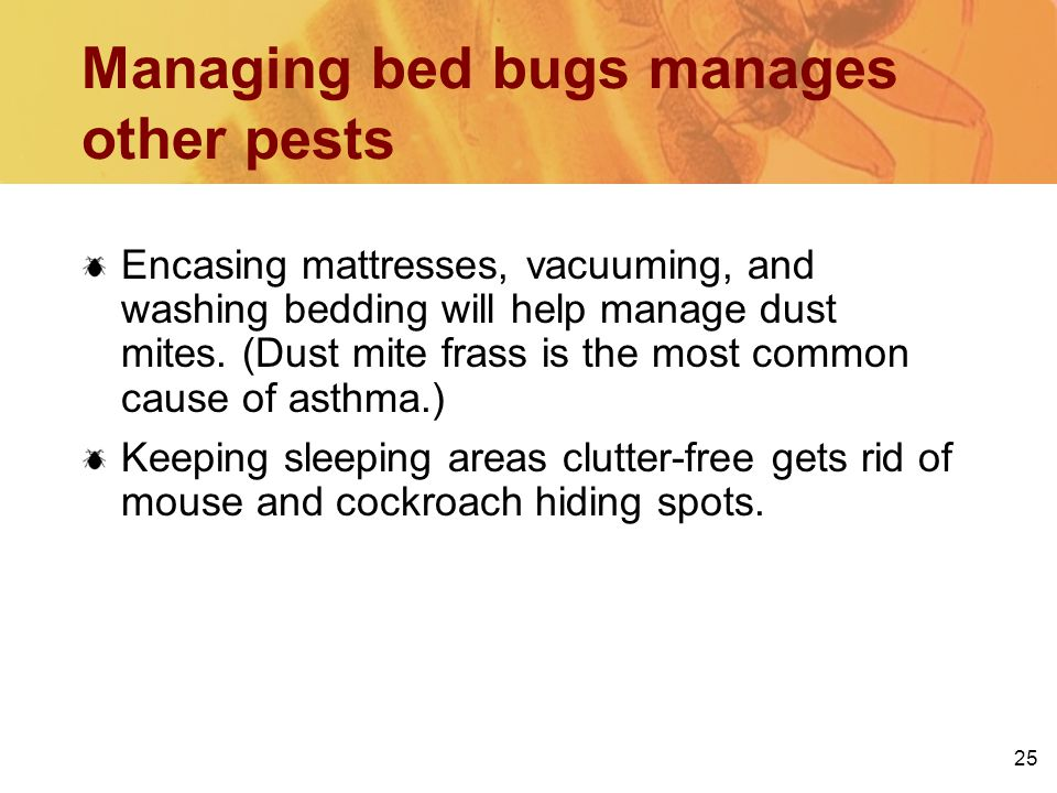 25 Managing bed bugs manages other pests Encasing mattresses, vacuuming, and washing bedding will help manage dust mites.