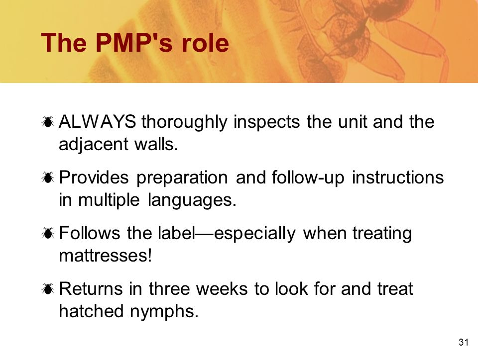 31 The PMP s role ALWAYS thoroughly inspects the unit and the adjacent walls.