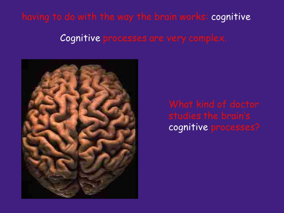 Cognitive processes are very complex. What kind of doctor studies the brains cognitive processes