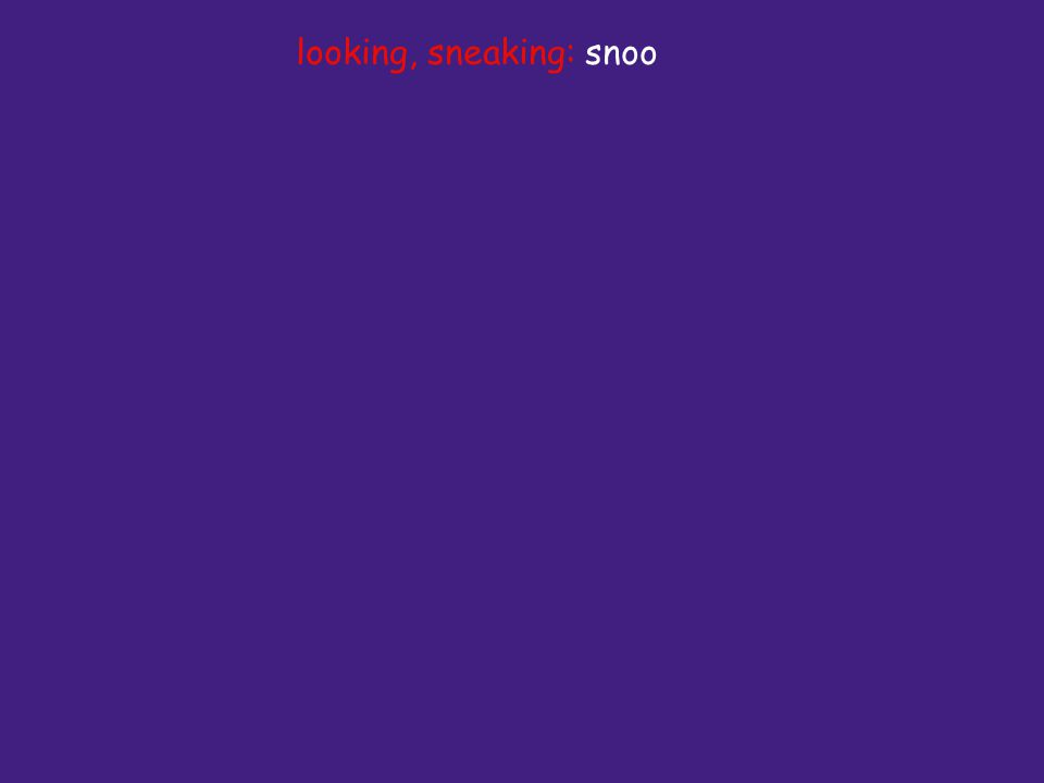 looking, sneaking: snoo