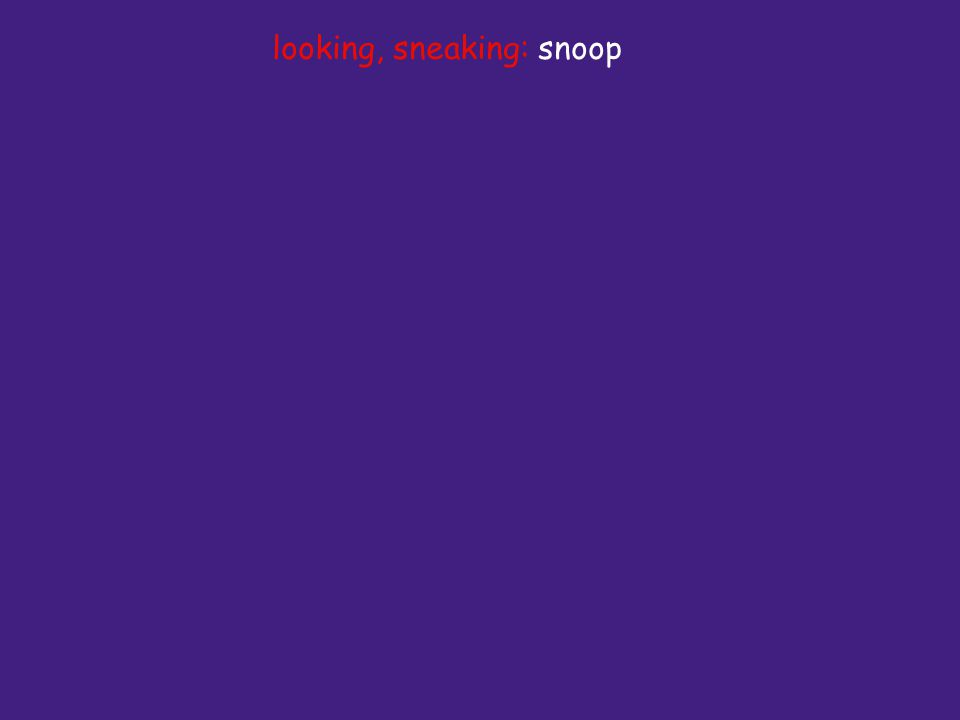 looking, sneaking: snoop