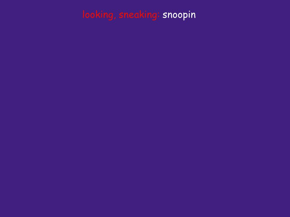 looking, sneaking: snoopin