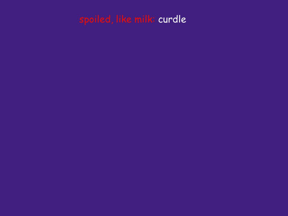 spoiled, like milk: curdle