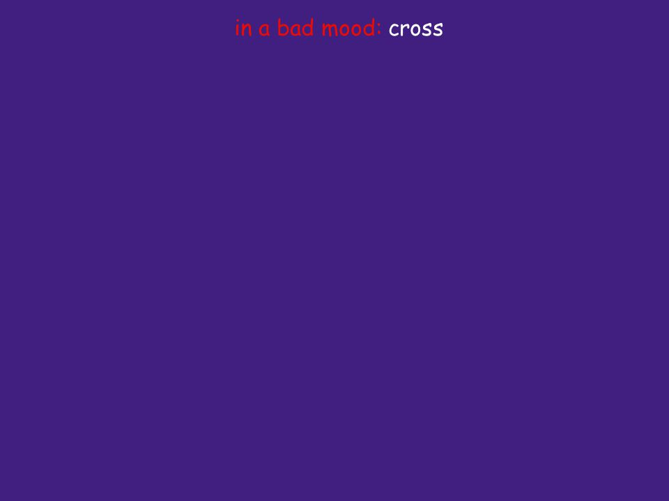 in a bad mood: cross