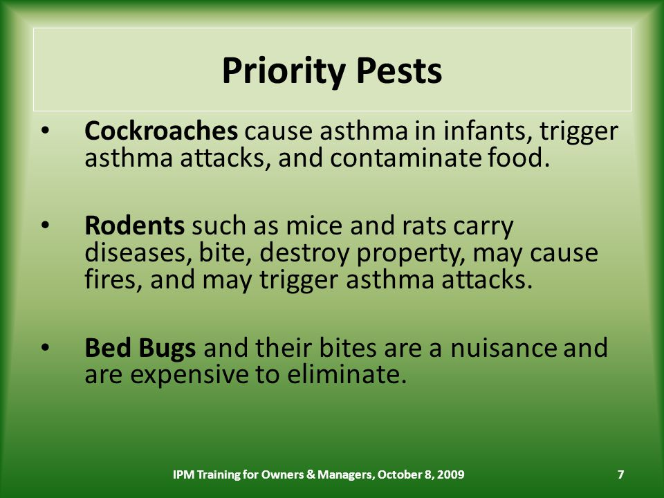 7 Priority Pests Cockroaches cause asthma in infants, trigger asthma attacks, and contaminate food.