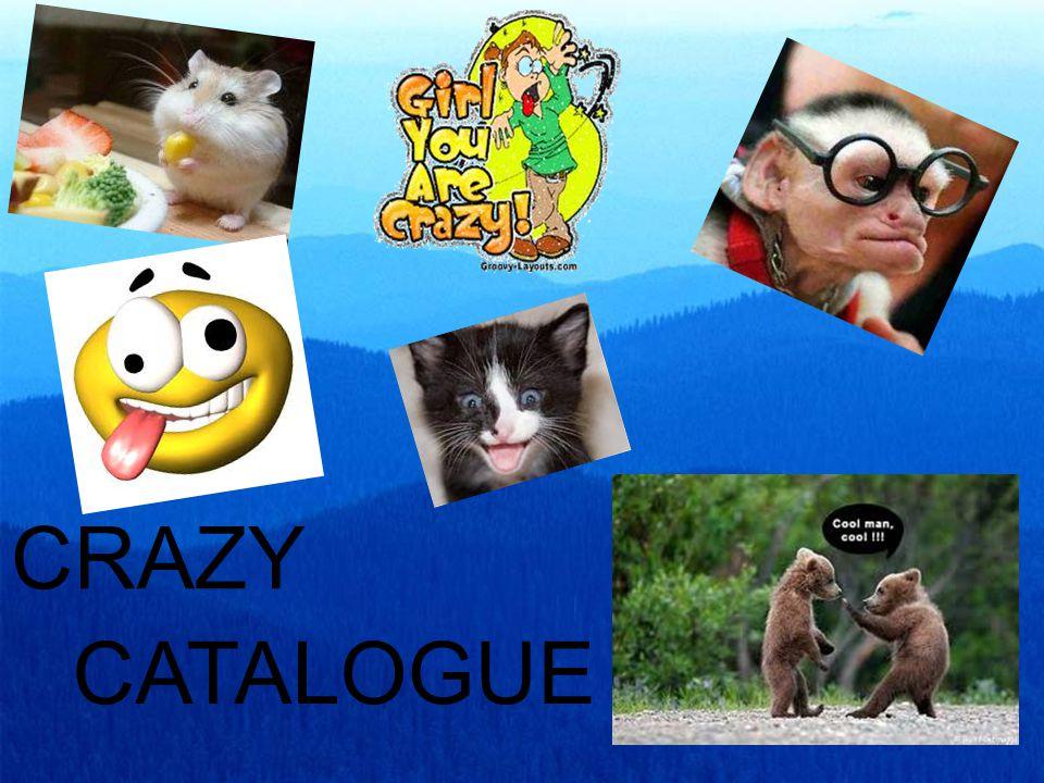CRAZY CATALOGUE