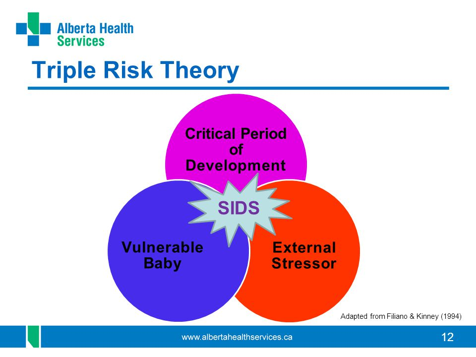 12 Triple Risk Theory Critical Period of Development External Stressor Vulnerable Baby SIDS Adapted from Filiano & Kinney (1994)