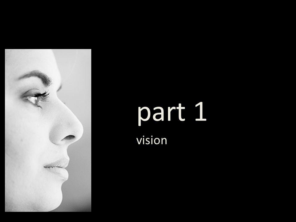 part 1 vision