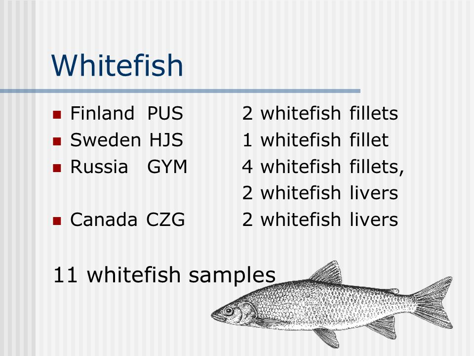 Whitefish Finland PUS 2 whitefish fillets Sweden HJS1 whitefish fillet RussiaGYM 4 whitefish fillets, 2 whitefish livers Canada CZG 2 whitefish livers 11 whitefish samples
