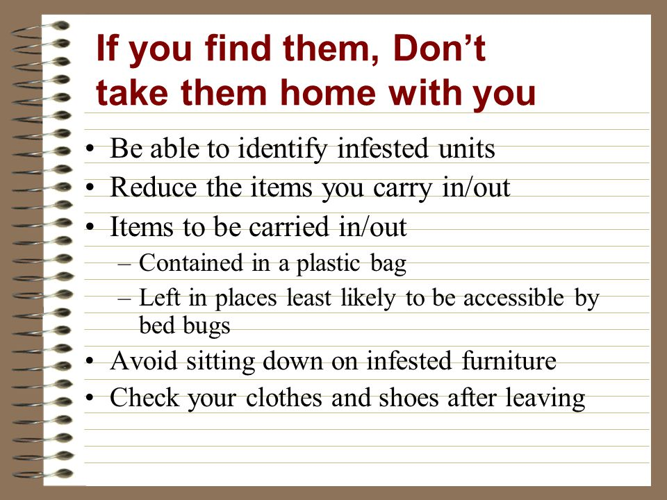 Be able to identify infested units Reduce the items you carry in/out Items to be carried in/out –Contained in a plastic bag –Left in places least likely to be accessible by bed bugs Avoid sitting down on infested furniture Check your clothes and shoes after leaving If you find them, Dont take them home with you