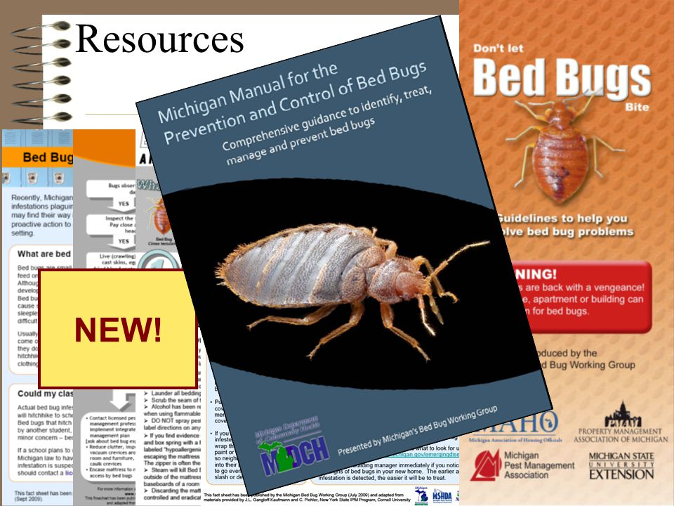 Resources NEW!
