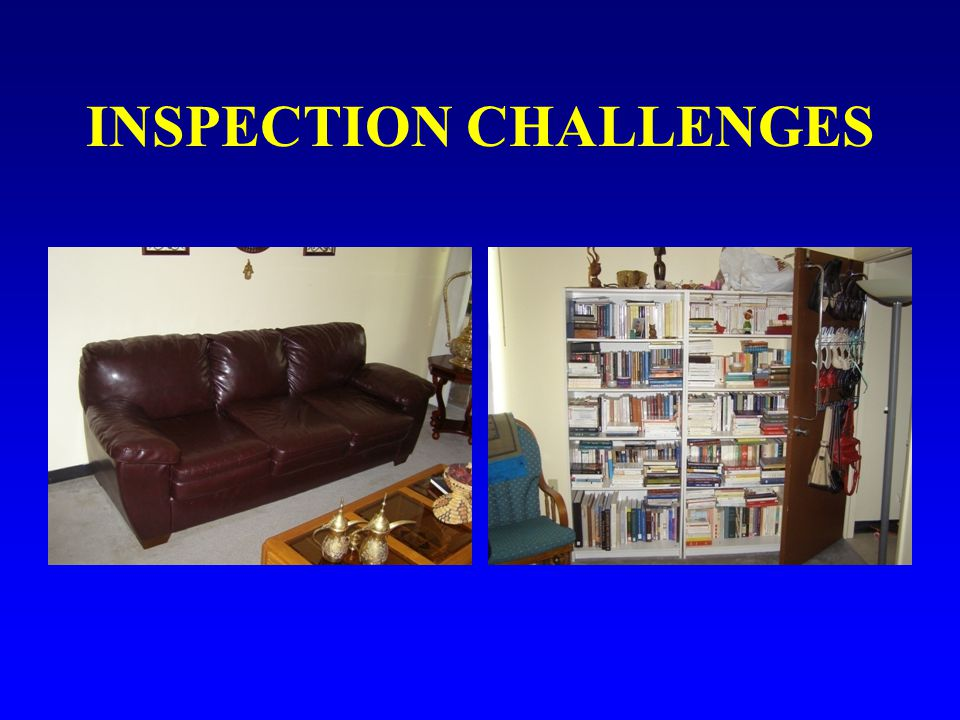 INSPECTION CHALLENGES