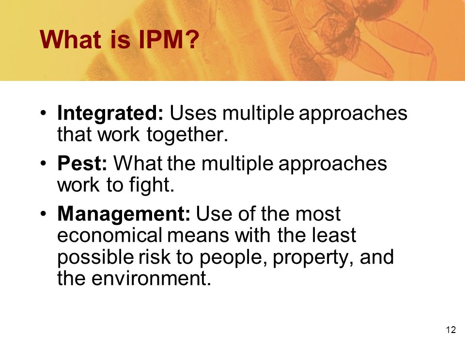 12 What is IPM? Integrated: Uses multiple approaches that work together. Pest: What the multiple approaches work to fight. Management: Use of the most