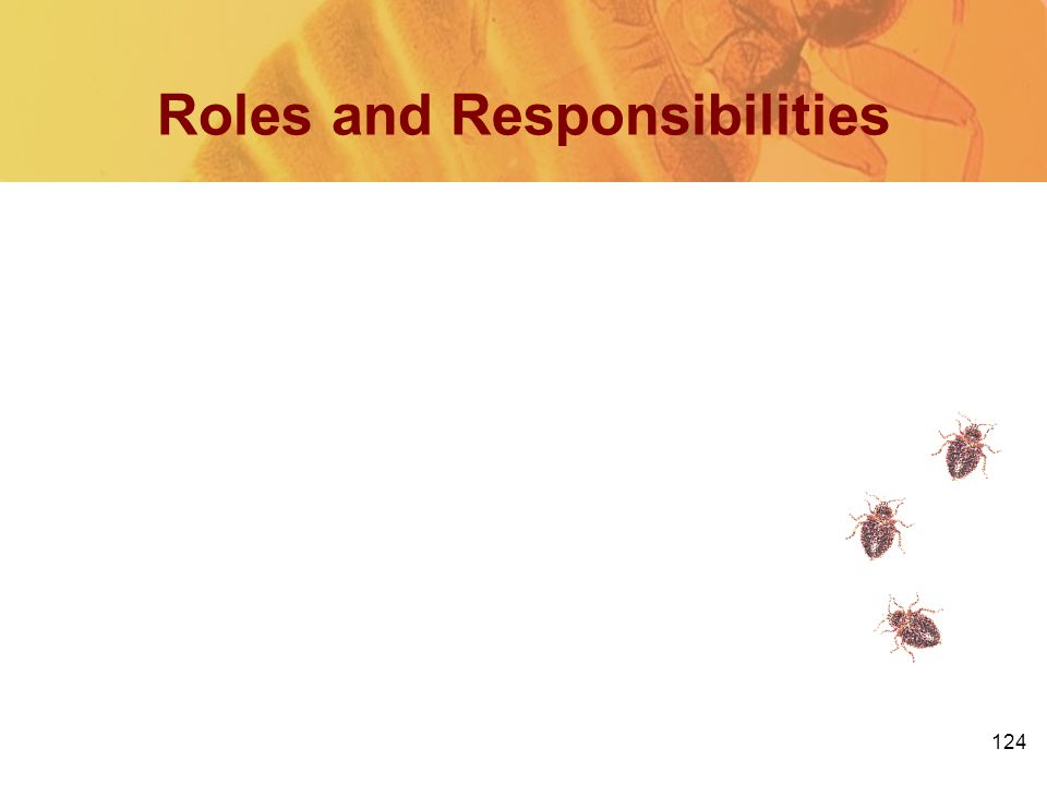 124 Roles and Responsibilities