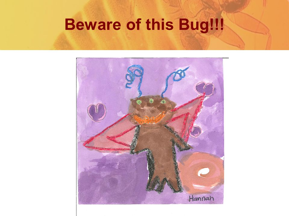 Beware of this Bug!!!