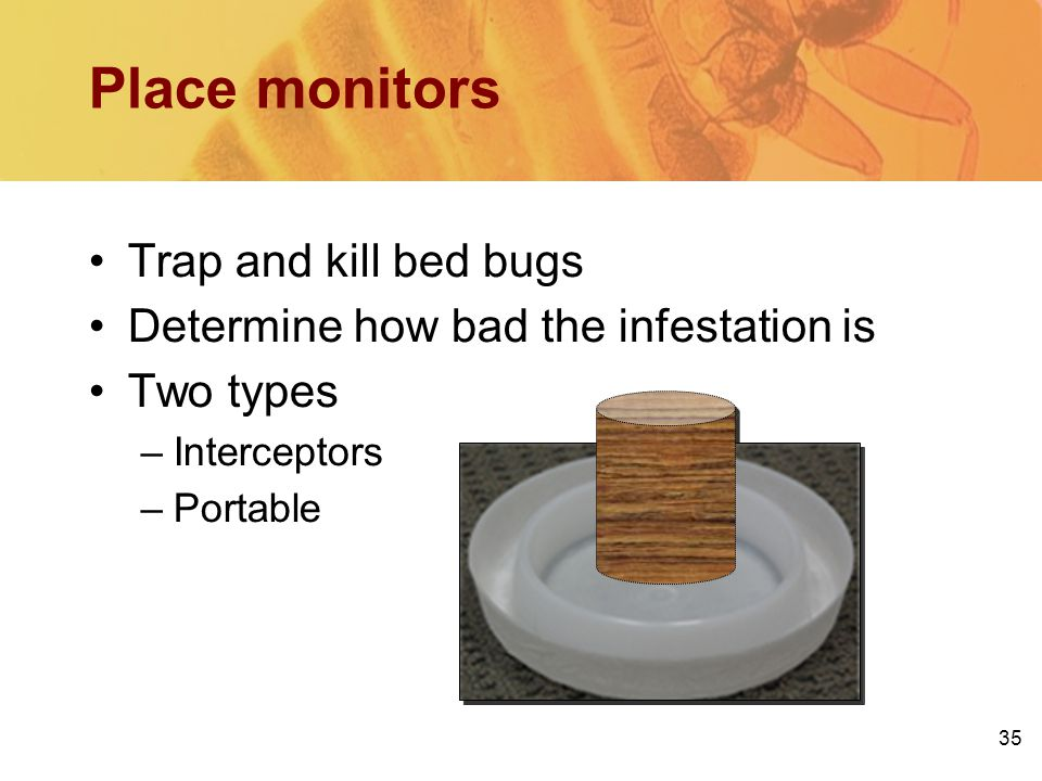 Place monitors Trap and kill bed bugs Determine how bad the infestation is Two types –Interceptors –Portable 35
