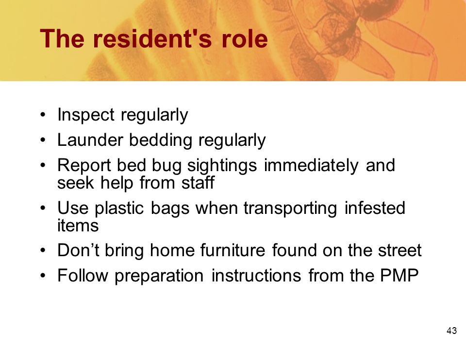 43 The resident's role Inspect regularly Launder bedding regularly Report bed bug sightings immediately and seek help from staff Use plastic bags when