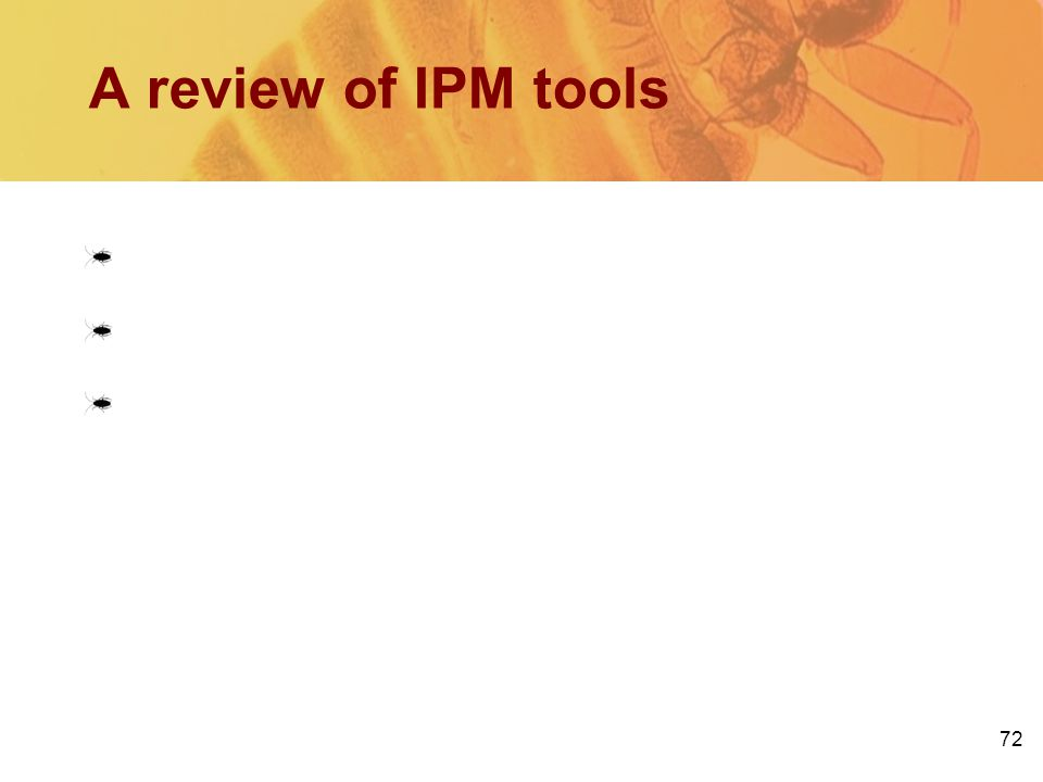 72 Sanitation Exclusion Pesticides: Bait Insecticidal dusts IGRs A review of IPM tools