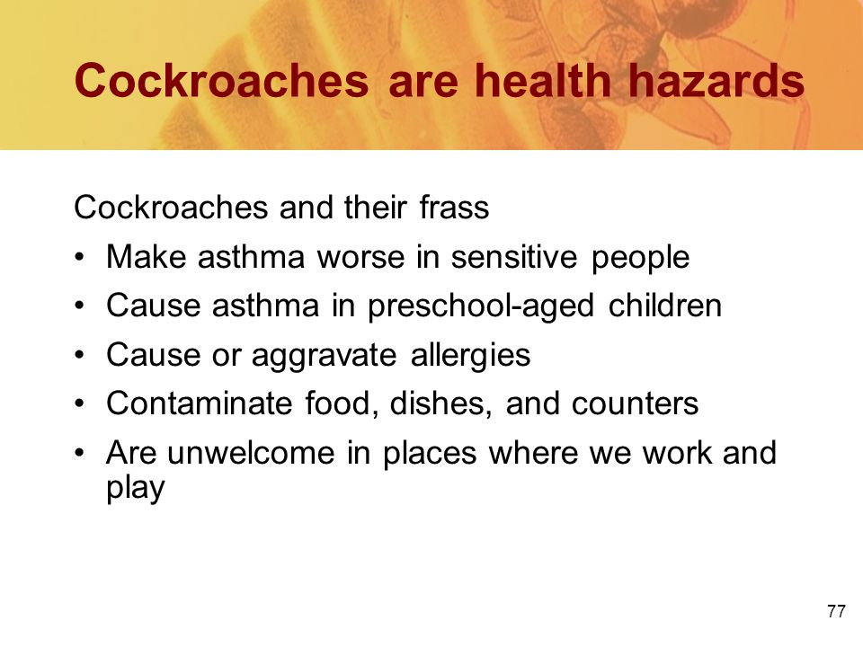 77 Cockroaches are health hazards Cockroaches and their frass Make asthma worse in sensitive people Cause asthma in preschool-aged children Cause or a