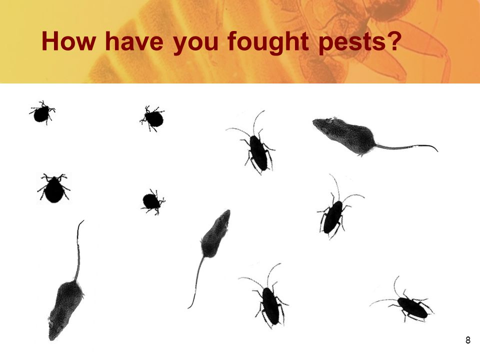 8 How have you fought pests?