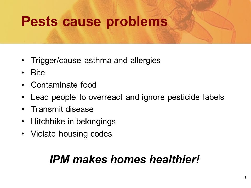 9 IPM makes homes healthier! Pests cause problems Trigger/cause asthma and allergies Bite Contaminate food Lead people to overreact and ignore pestici