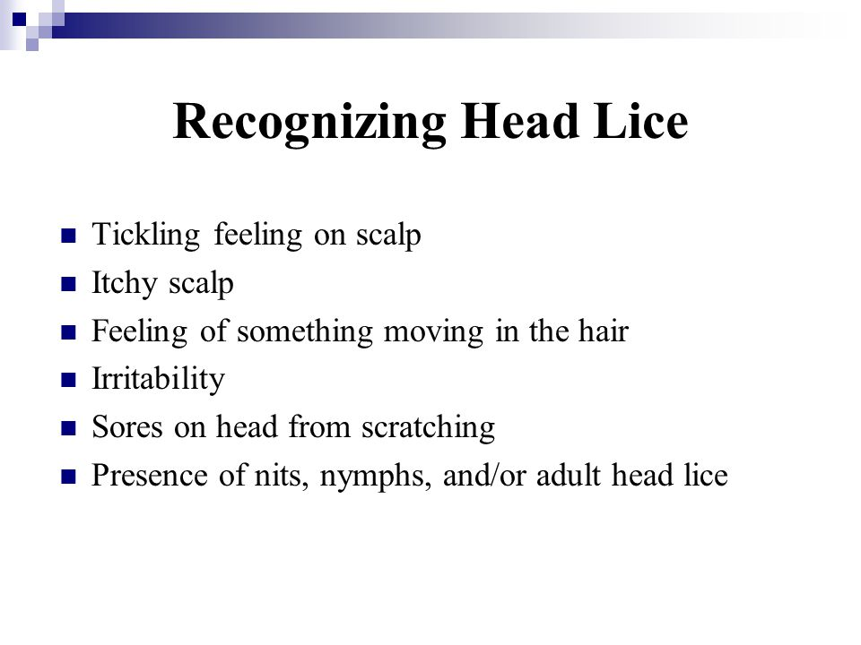 Recognizing Head Lice Tickling feeling on scalp Itchy scalp Feeling of something moving in the hair Irritability Sores on head from scratching Presenc