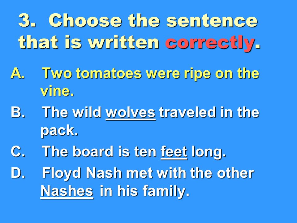 3.Choose the sentence that is written correctly. A.