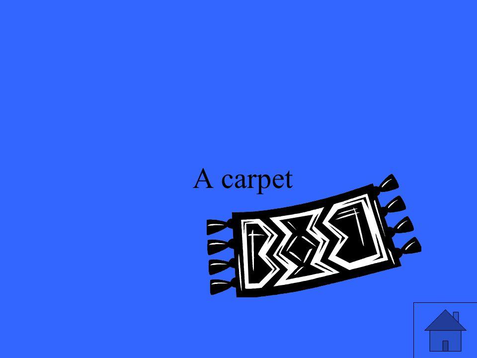 49 A carpet