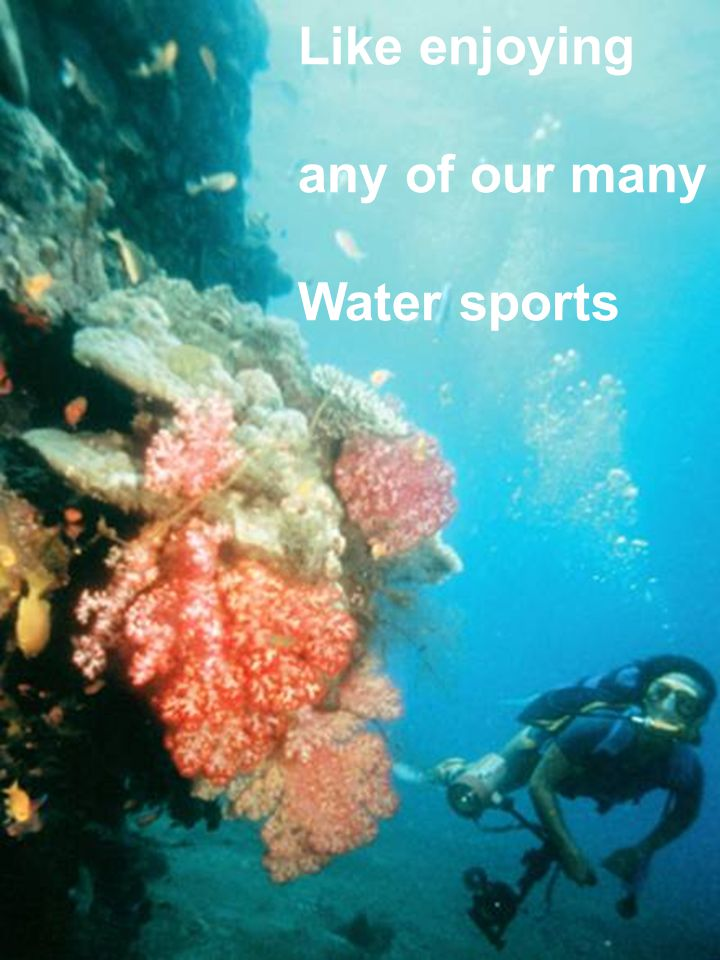 Like enjoying any of our many Water sports