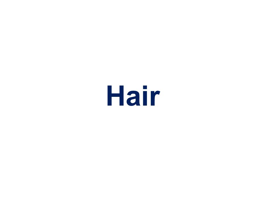 Finding probative hair evidence can be crucial in the final adjudication of a case.